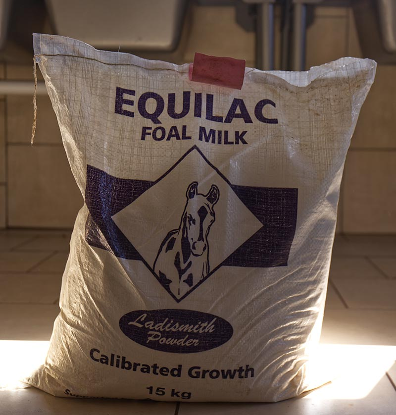 Equilac for rhinos